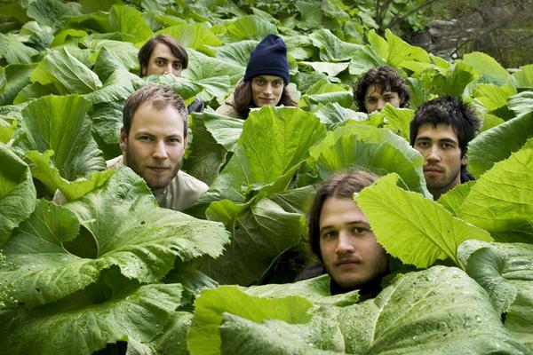 Da ist was im Busch: die dänische Band Efterklang.